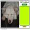 Pet Puzzle -  Puzzle Game